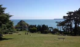 View of a fantastic Torquay dog walk at Thatcher Rock